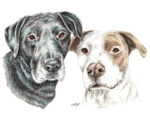 Custom pet portraits are a great gift idea for your favorite dog/cat/horse lover. They can also be a wonderful keepsake as a memorial of your beloved four-legged friend or a personalized portrait of your current pet.